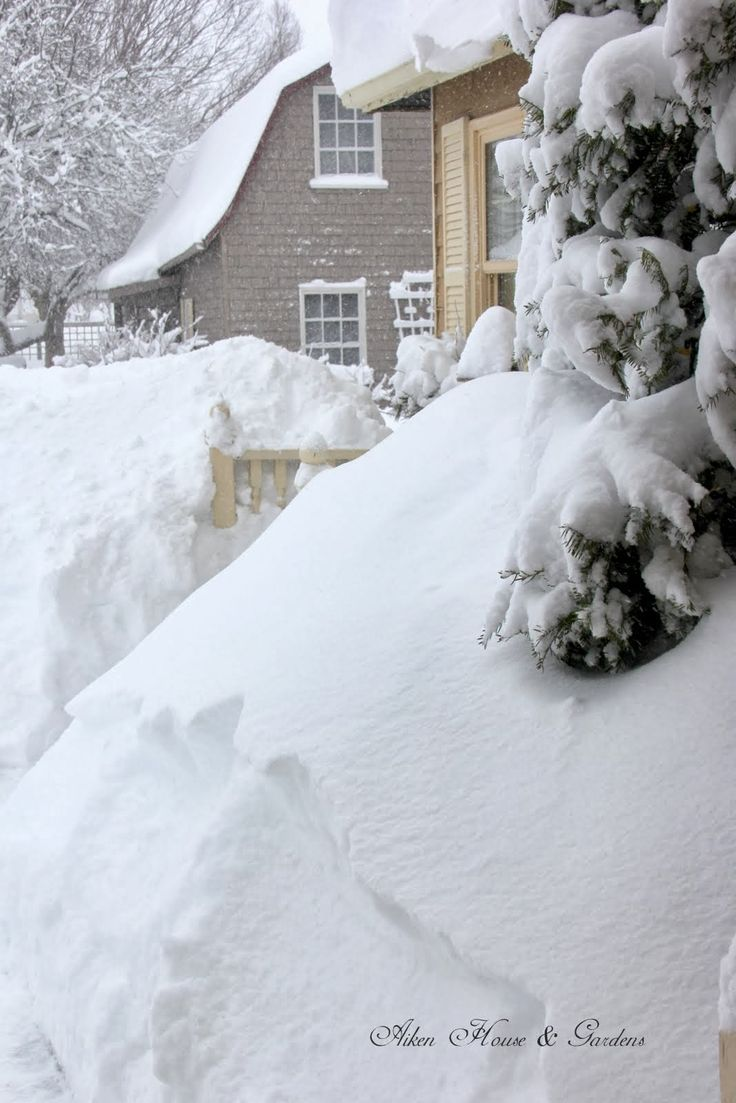 In the Bleak Mid Winter, Prince Edward Island, Canada