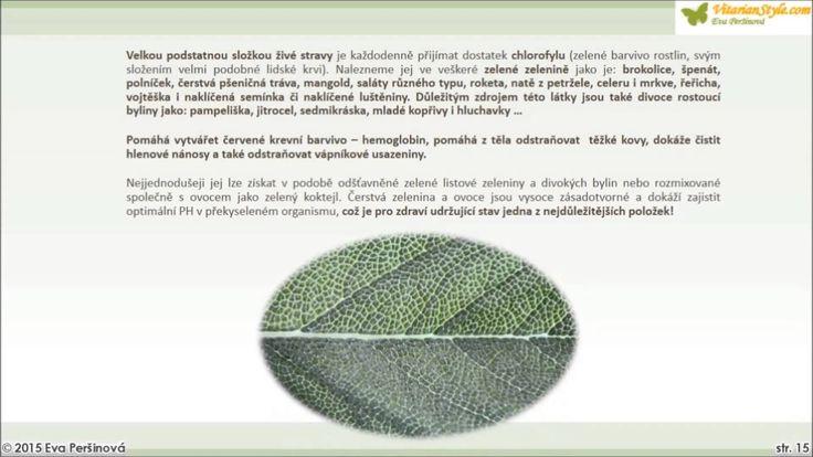 3. Základní zdroje výživy
