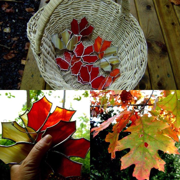Stained glass Canadian Maple Leaf