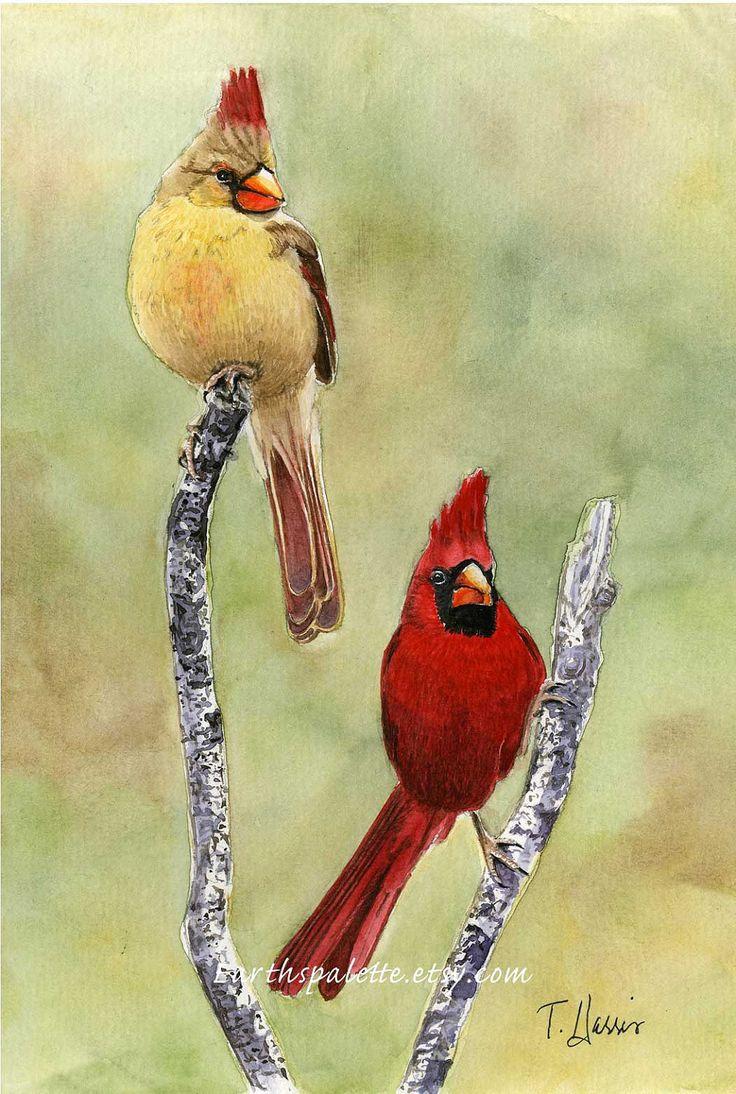 17 Best ideas about Bird Paintings on Pinterest | Watercolor bird ...
