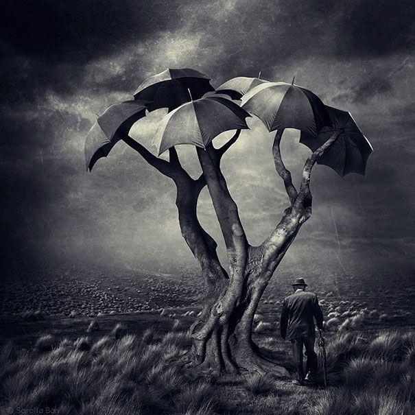 20 New Surreal Photo Manipulations by Sarolta Ban | DeMilked