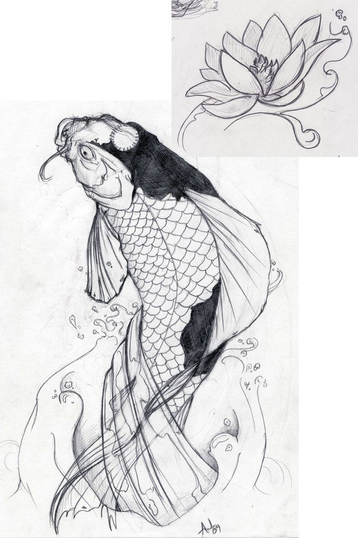 Butterfly koi fish koi fish tattoo designs sketch for Butterfly koi tattoo