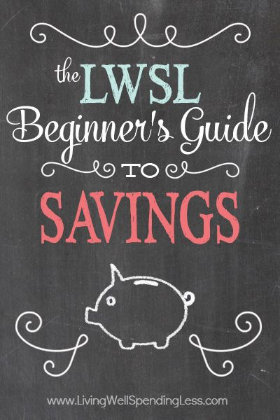 I should really work on wasting less money. The Beginner's Guide to Savings | Budgeting 101 | How to Make a Budget
