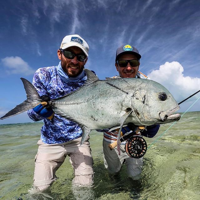 Pin by Jennifer on Saltwater fish in 2020 | Fly fishing