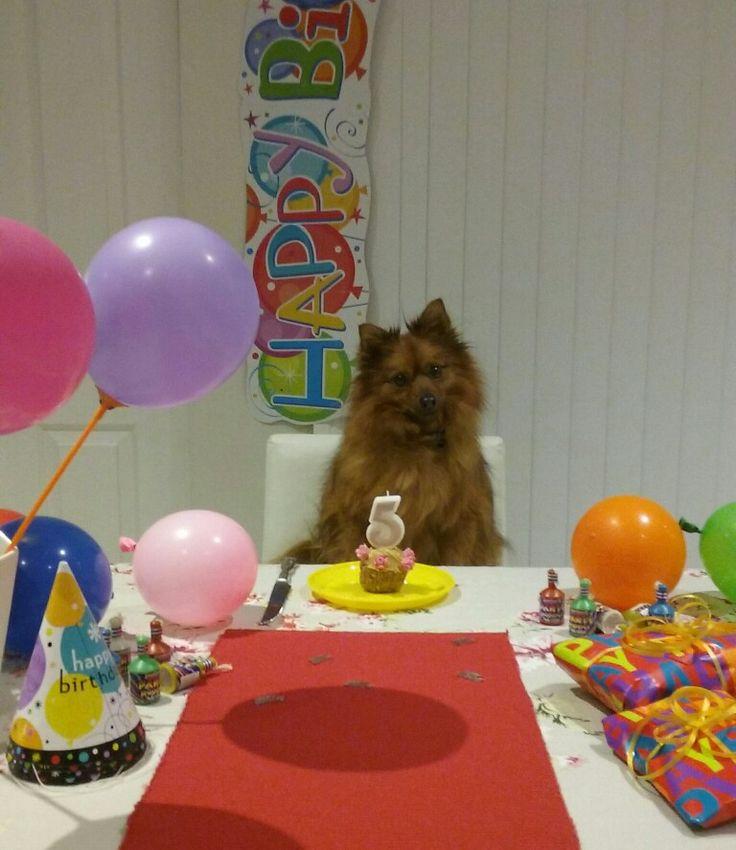 Happy 5th Birthday my darling Ariel