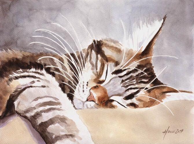 CyBeRGaTa - Cats, Memes, New Mexico: Photo - watercolour, tabby cat (hva)