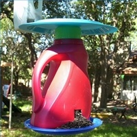 Detergent Bottle bird feeder