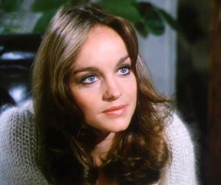 pamela sue martin nancy drew - photo #2