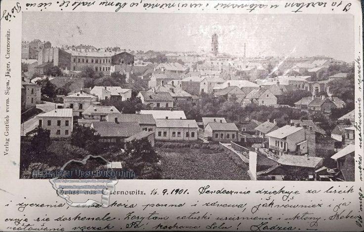 Cernăuţi. Plasa Cosmin. Oraşul Cernăuţi. Vedere generală. 1901