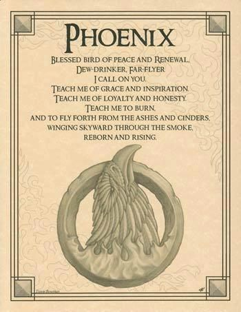 Pheonix tattoo meaning. I love. This so my next addition . So don't jack it ppl I know!!!