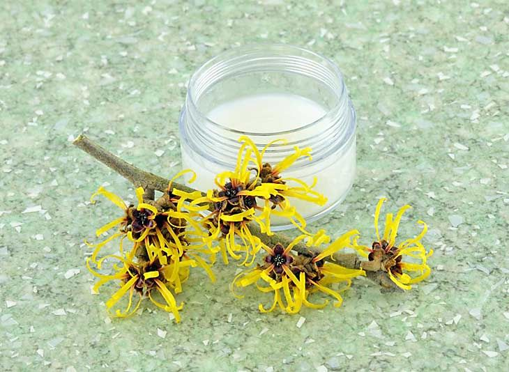 Witch Hazel: How to get rid of Genital Warts https://ambrossimo.com/genital_warts-home_remedies/ #ambrossimo #skincare #homeremedies #skin #warts #genetalwarts