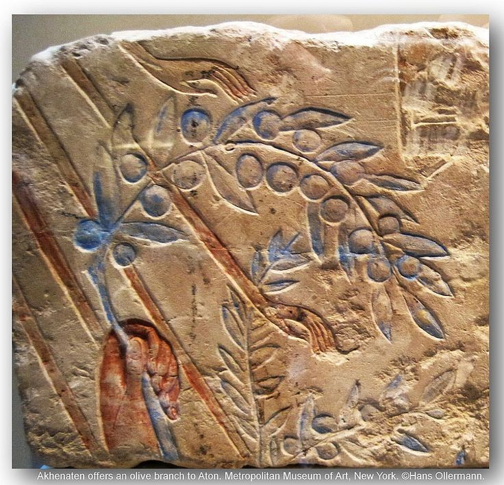 Akhenaten offers an olive branch to Aton. Metropolitan Museum of Art, New York.   by Hans Ollermann