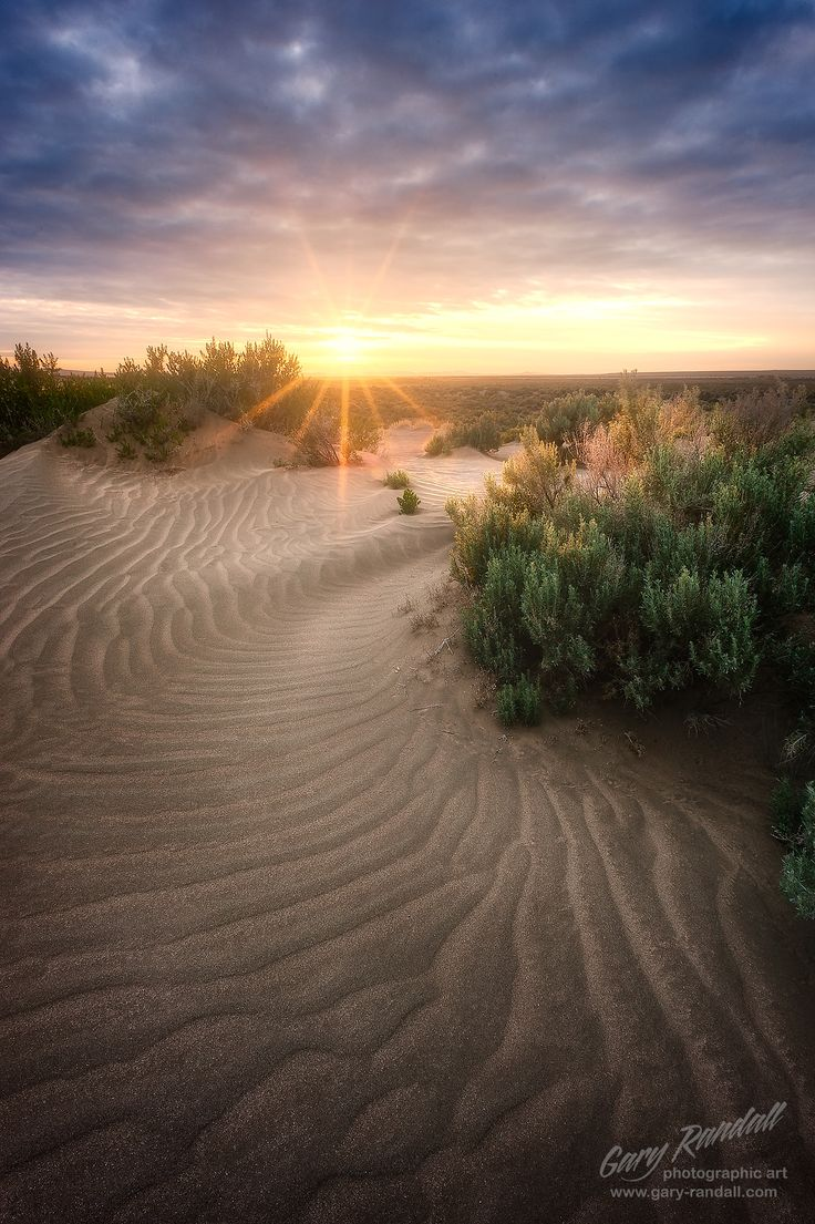 Oregon Desert Dunes | Christmas Valley Sand Dunes in Central Oregon at sunset.