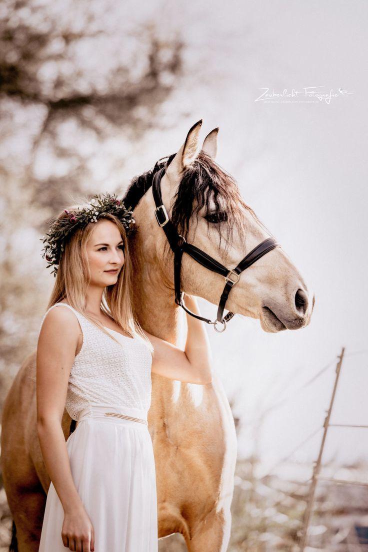 Connemara Zauberlicht Fotografie   Pferd   Bilder …