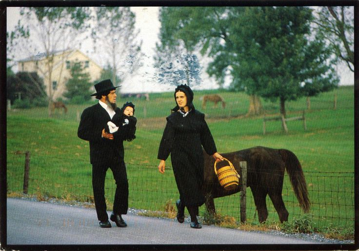 UNITED STATES (Pennsylvania) - Life in Amish Country (2)