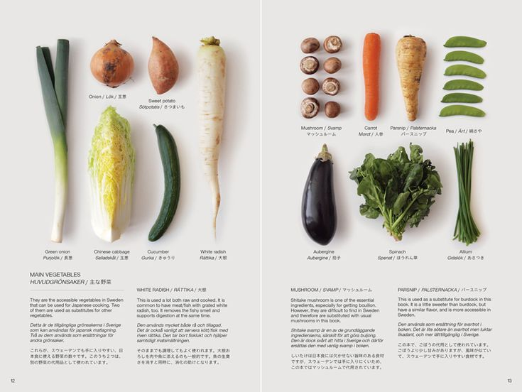guide to the foreign japanese kitchen di moe takemura