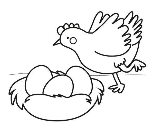 Gallina Con Huevos De Pascua Dibujo Para Colorear E Imprimir Huevo Para Colorear Gallinas Dibujos Huevos De Gallina