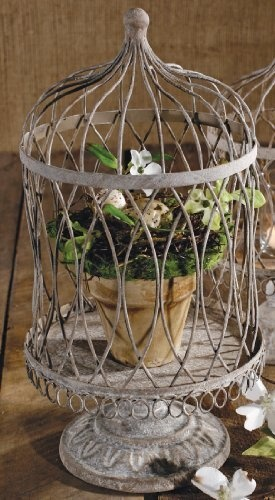 Weathered Grey Wire Cloche Dome Terrarium with Decorative Metal Base by In the Garden and More, http://www.amazon.com/dp/B007NYZX0I/ref=cm_sw_r_pi_dp_lRdYpb17KP0JY