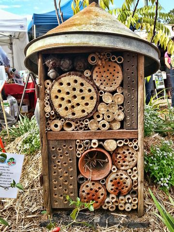 the bee hotel