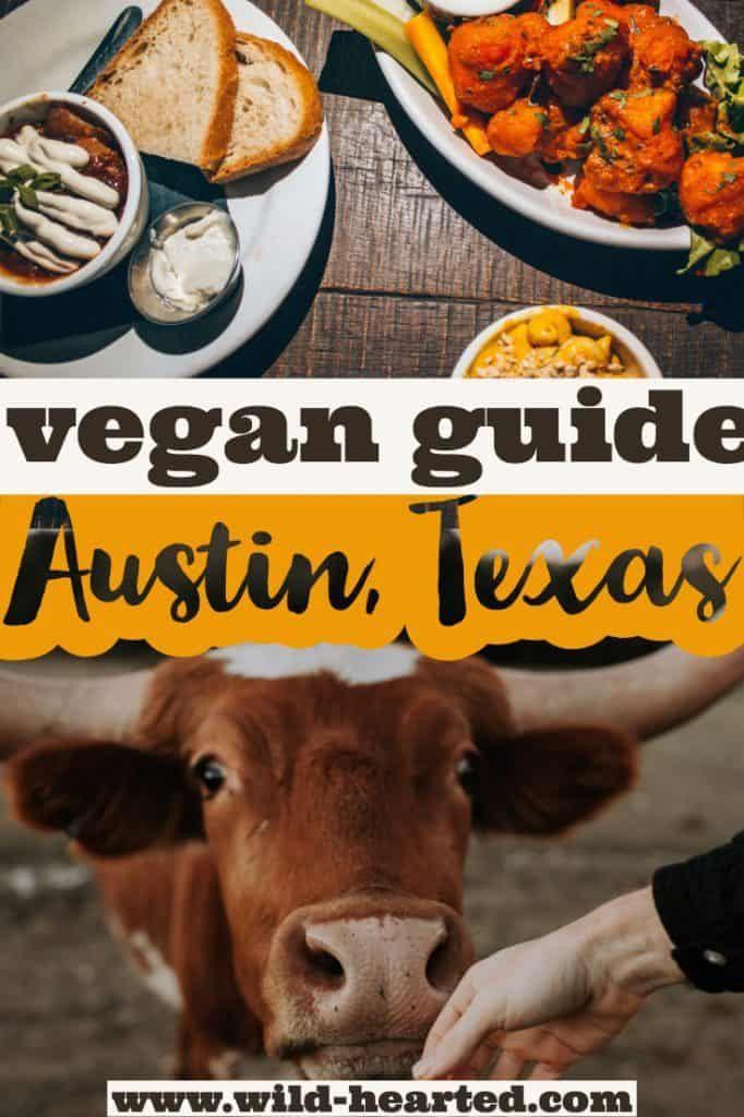 Vegan In Austin A Full Vegan Restaurant Guide To Austin Texas Vegan Restaurants Vegan Travel Austin Travel Guide