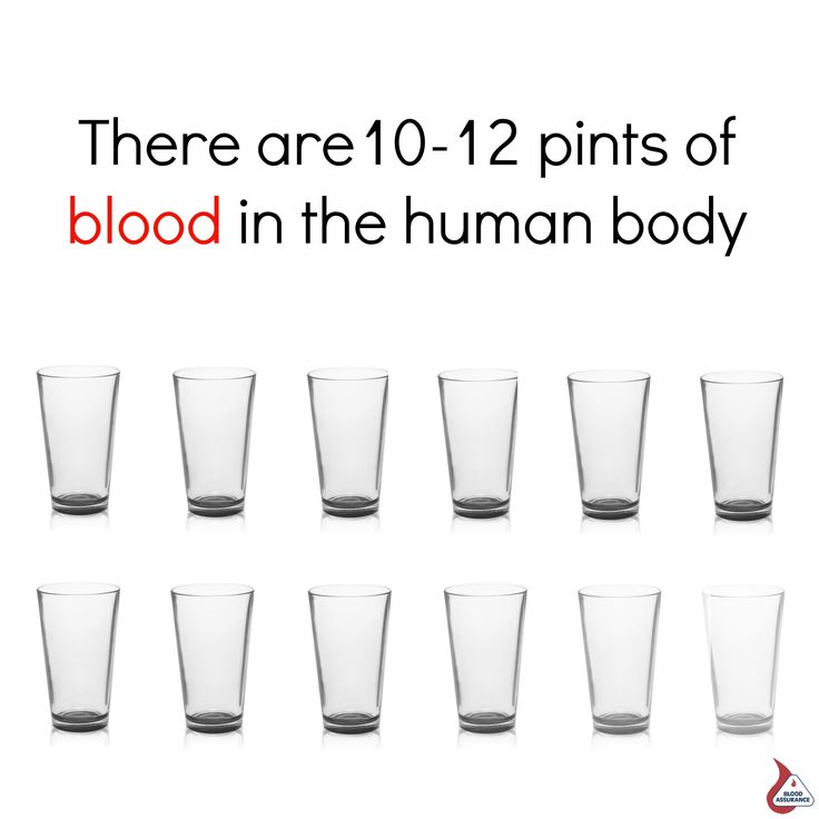 by donating, you're sharing 1 pint of your blood with a patient in, Human Body
