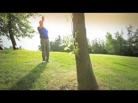 Il Maestro Duncan Muscroft ti spiega come superare l'ostacolo albero.