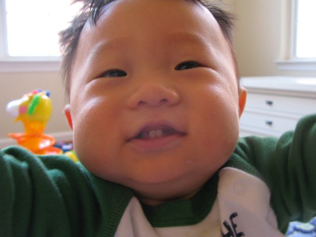 Cheek chubby face name wubby
