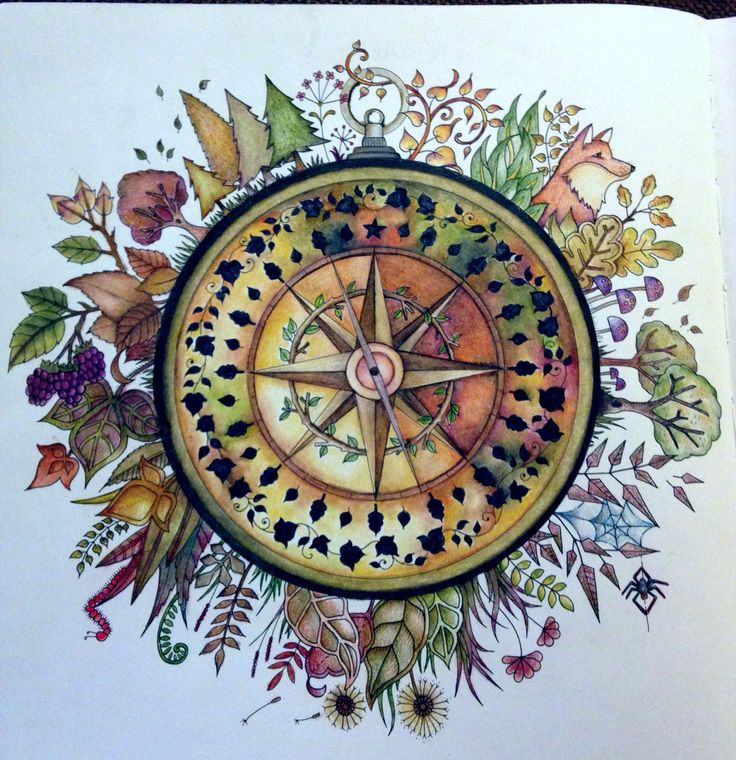 The Compass Coloring TipsAdult ColoringColoring BooksColouringCompass DrawingJoanna BasfordEnchantedJohanna