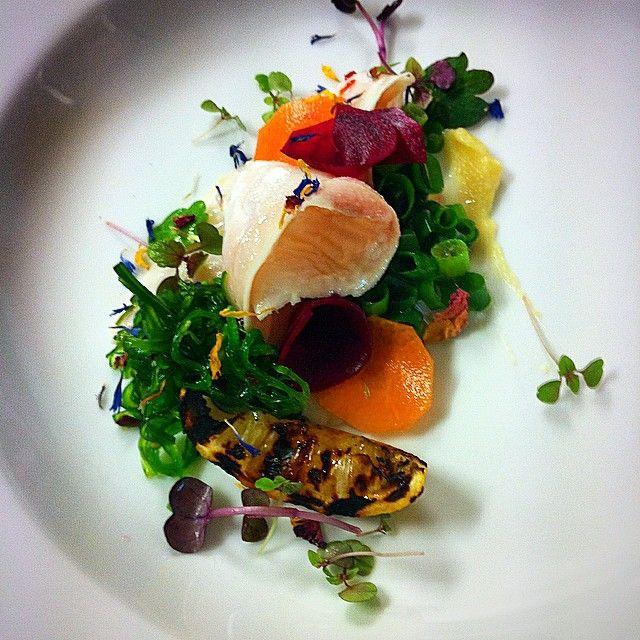 The Gunyah Restaurant - Paperbark Camp | Woollamia | Jervis Bay  Tiradito, a delicius Peruvian dish