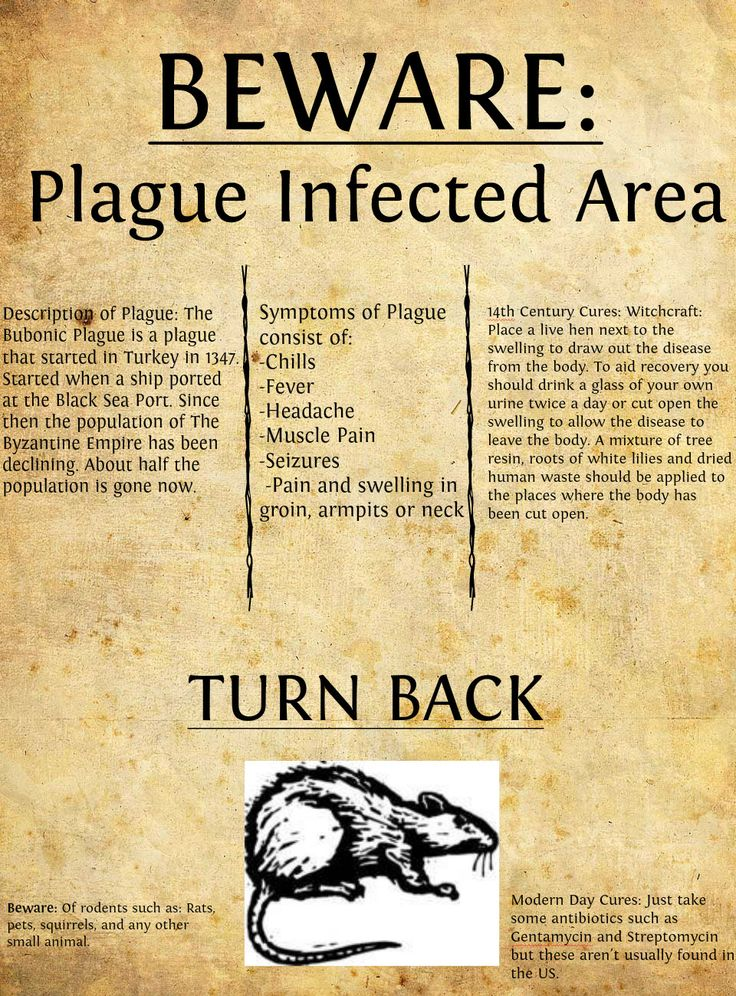 the devastation that the bubonic plaque brought on people