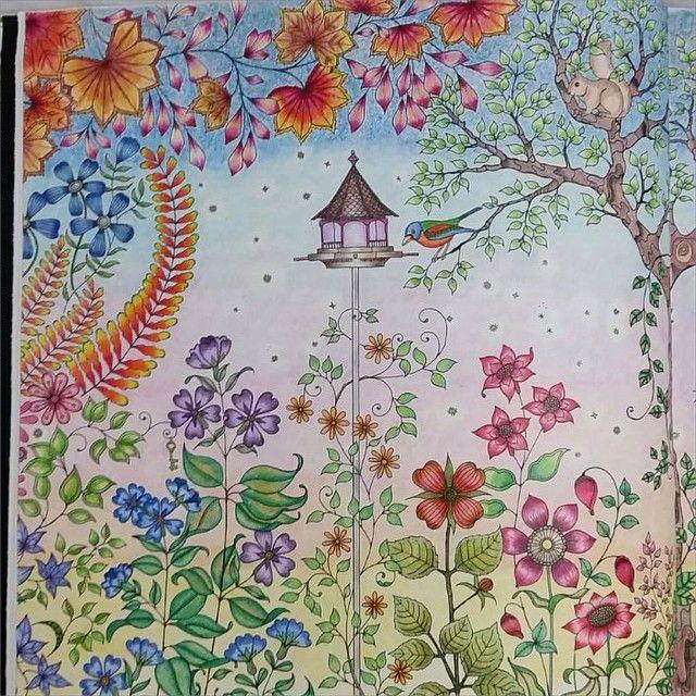56 best images about colouring on pinterest for Jardin secreto