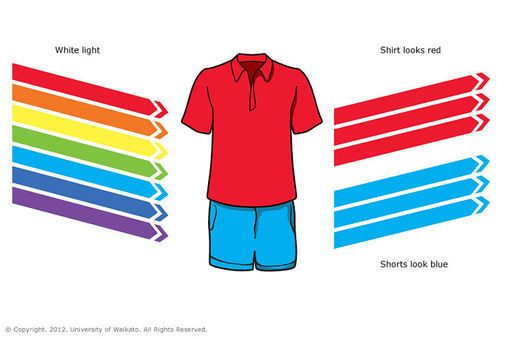 INFO SHEET - Colours of light –  Light is made up of wavelengths of light, and each wavelength is a particular colour. The colour we see is a result of which wavelengths are reflected back to our eyes.