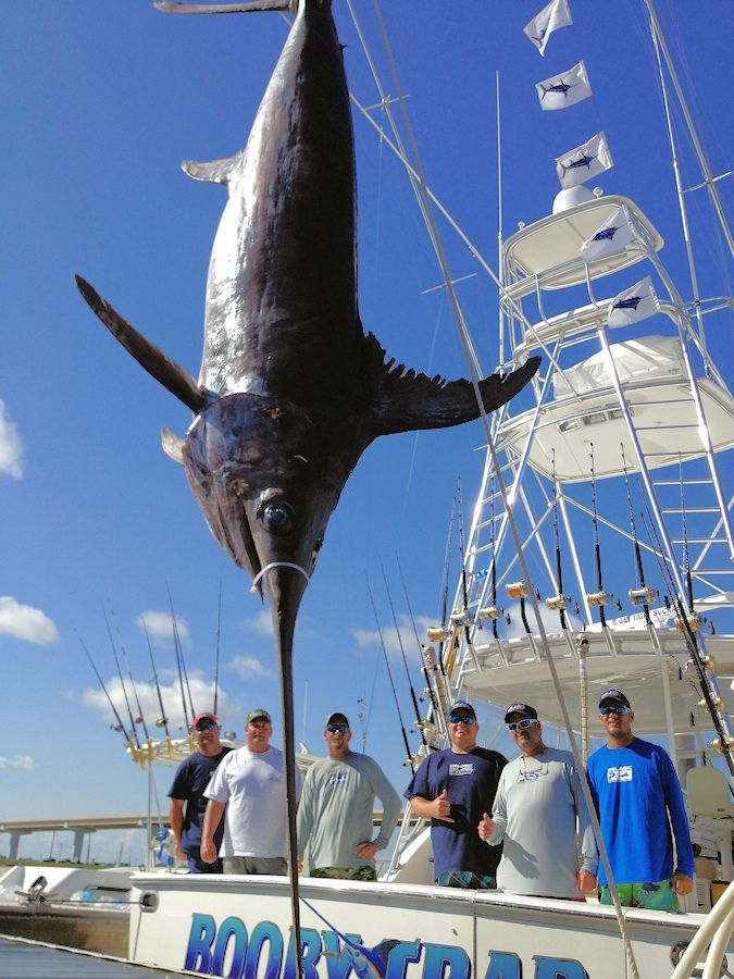 1000 images about fishing freeport surfside beach and for Deep sea fishing bay area