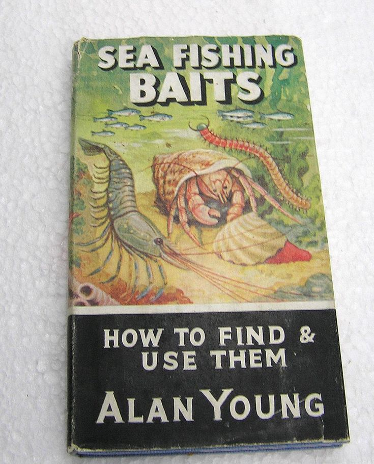 Sea Fishing Baits Book how to find & use them 1960 Allan Young by LakeDistrictEphemera on Etsy