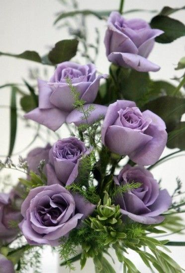 29 Best Images About Sterling Silver Roses My Fav On