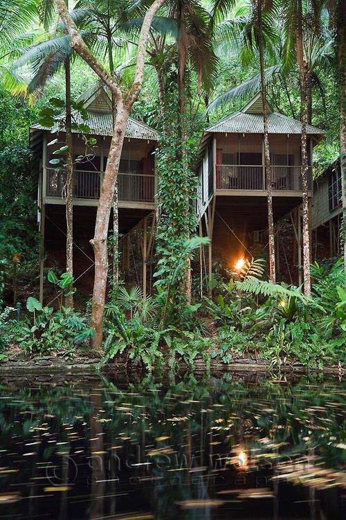 Rainforest villas at the Daintree Eco Lodge and Spa.  Daintree, Queensland…