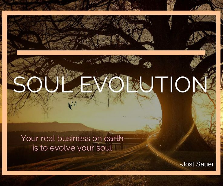 Soul Evolution. Your real business on earth is to evolve your soul.