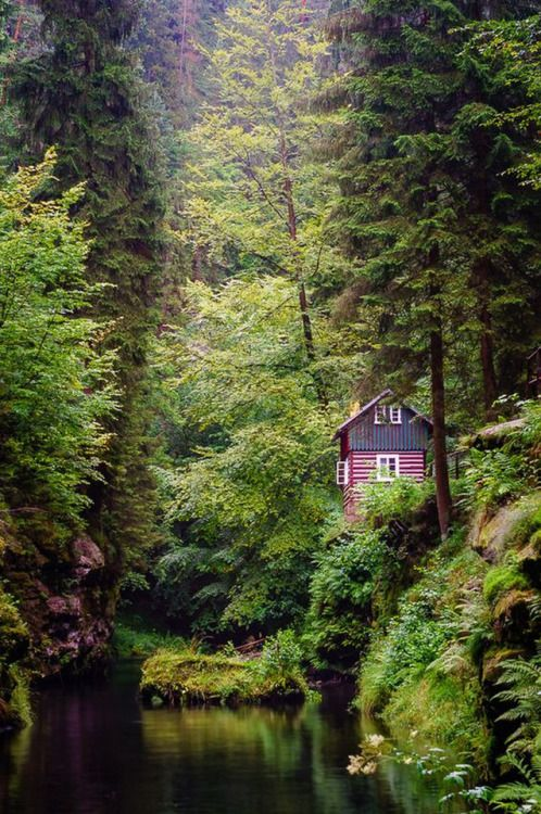 A lovely cabin in the woods!