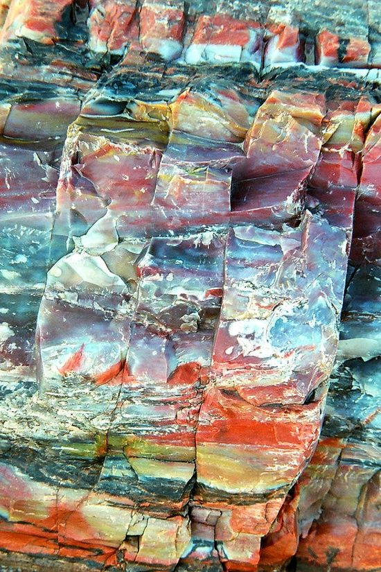 Petrified Rocks, AZ -- I have a piece of this colorful rock (I bought it outside of the national park ;))