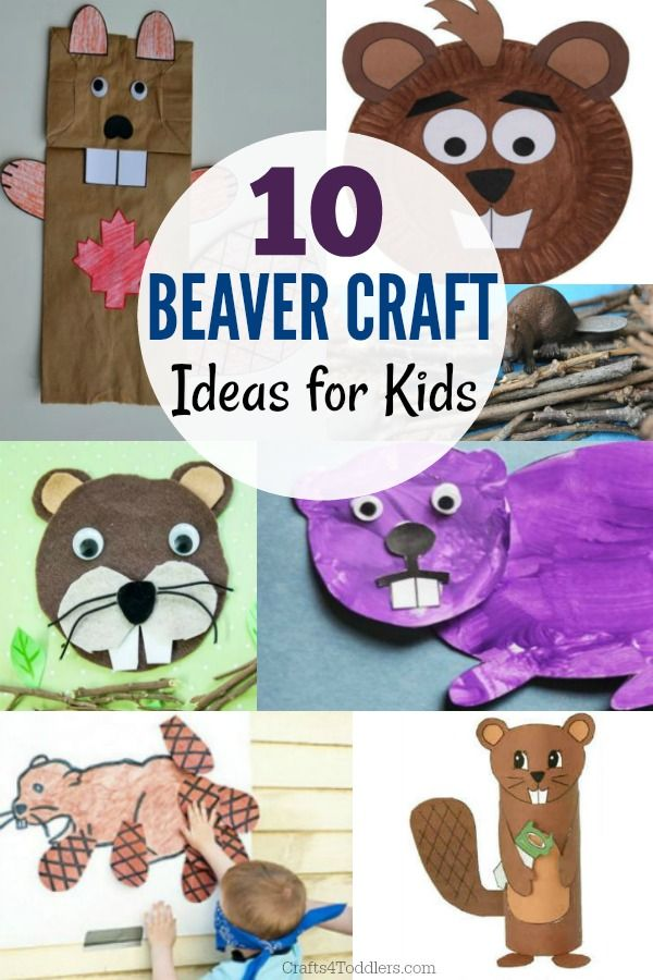 Check Out All Of These Fun Beaver Craft Ideas For Kids There Are