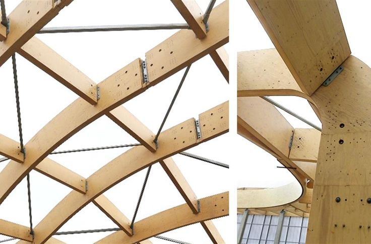 Long Span Wooden Rafters Enable The Curved Shape Of