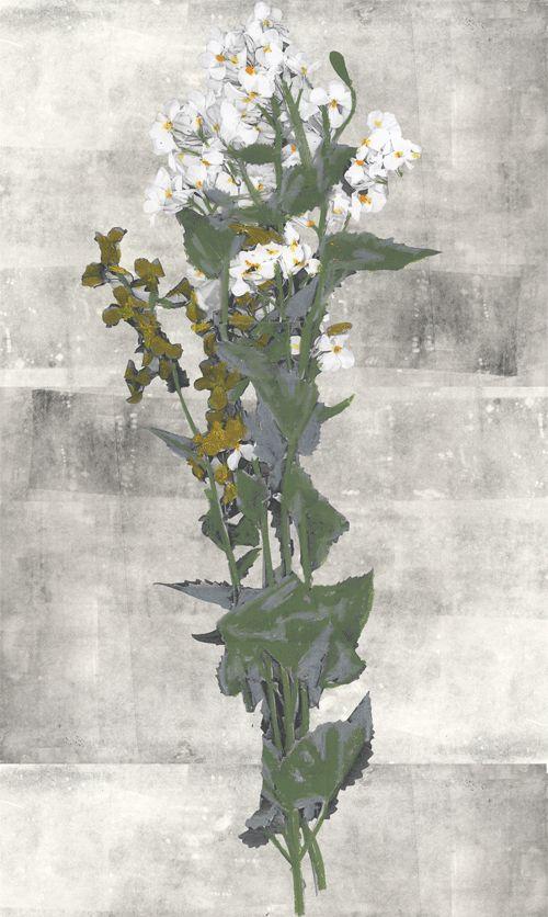 Bouquet-Panel-1.png 500×836 pixels. Natalie ratcliffe