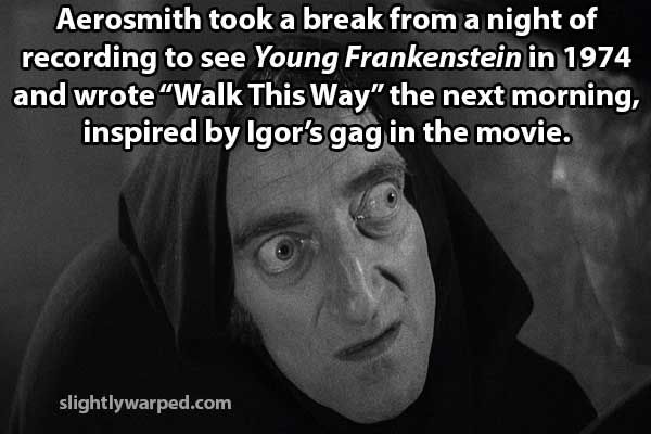 http://slightlywarped.com/thoughtvomit/images/movie_facts/young_frankenstein.jpg