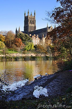 River Severn and Worcester Cathedral, UK (by Stuart Key, via Dreamstime)