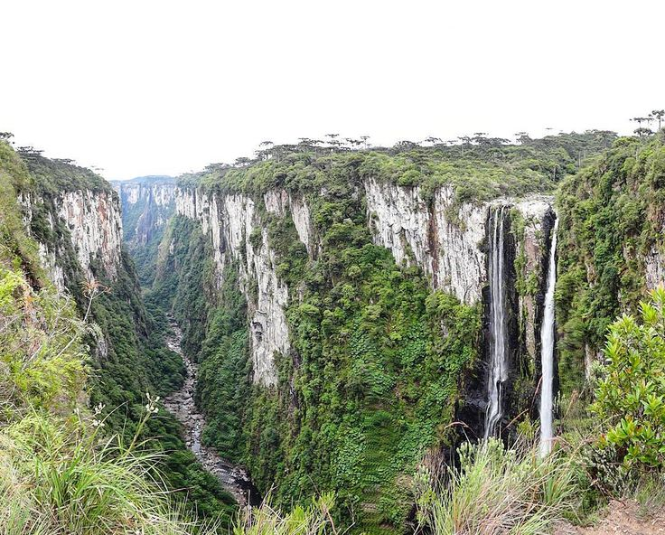 Um cenário que parece ter saído do filme Avatar com árvores enormes rios cachoeiras gêmeas paredões a perder de vista... Um dos cânions mais famosos e incríveis do Brasil.  Vamos ver se vocês estão espertos. Alguém acerta o nome e onde ele fica?  Tem dicas lá no blog http://ift.tt/1Rd5iyX