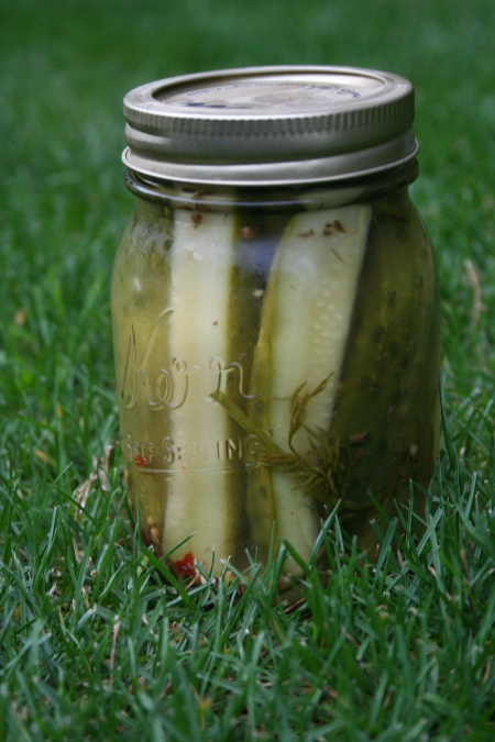 Old Fashioned Refrigerator Pickles Recipe