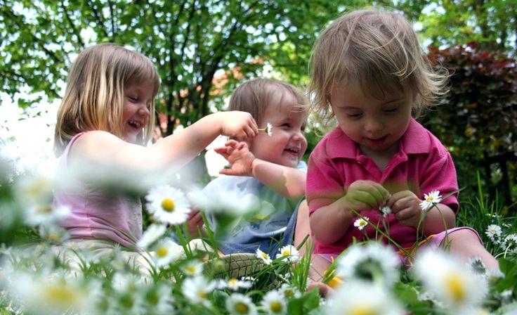 Urlaub mit Kindern im Alter von 0-6 Jahren direkt an der Nordsee auf dem Bauernhof.