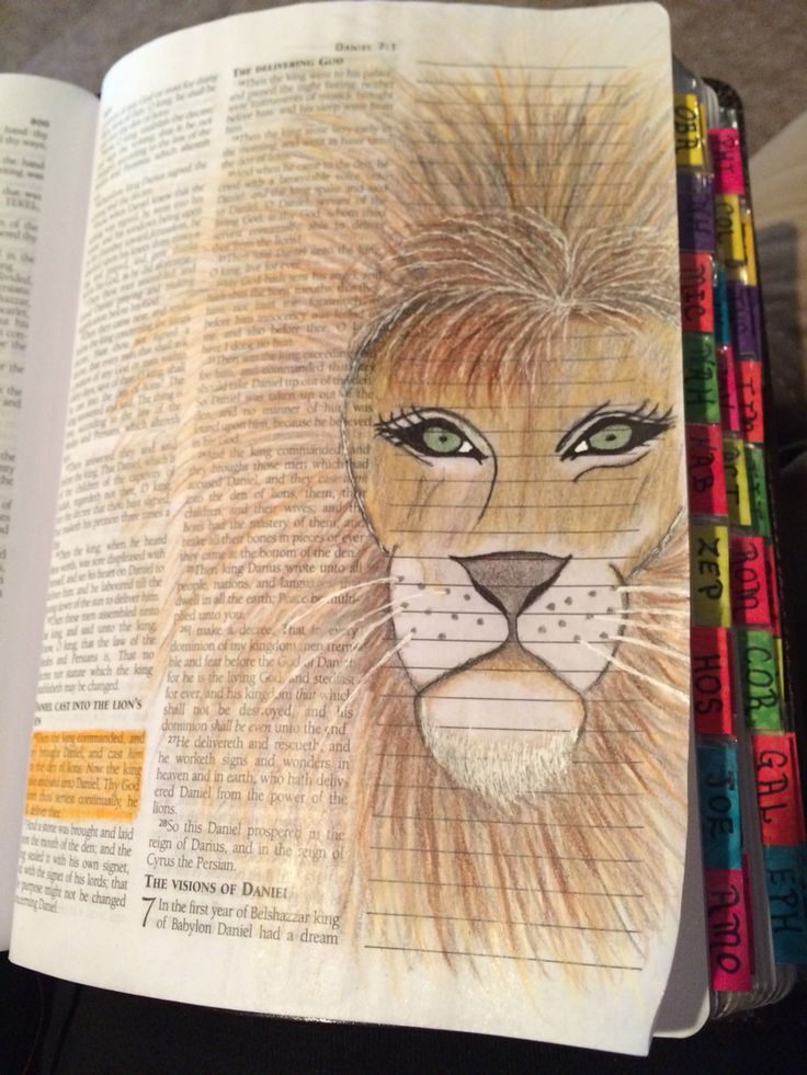 Bible Journaling Daniel And The Lions Den Bible
