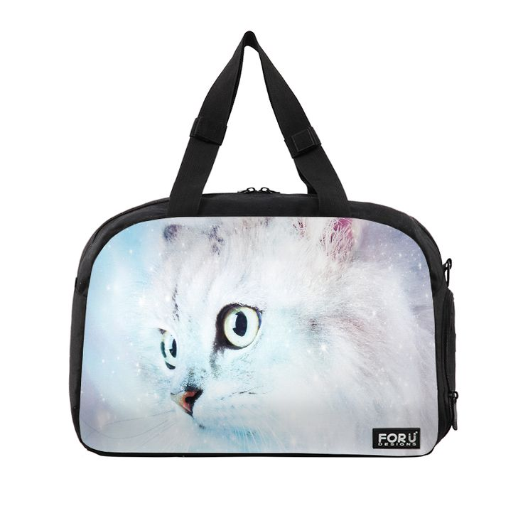 Fluffy starry cat