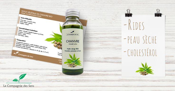 Toutes les propriétés de notre huile végétale de Chanvre #HV #aromatherapie